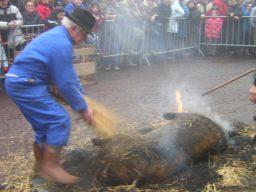 fete-saint-cochon