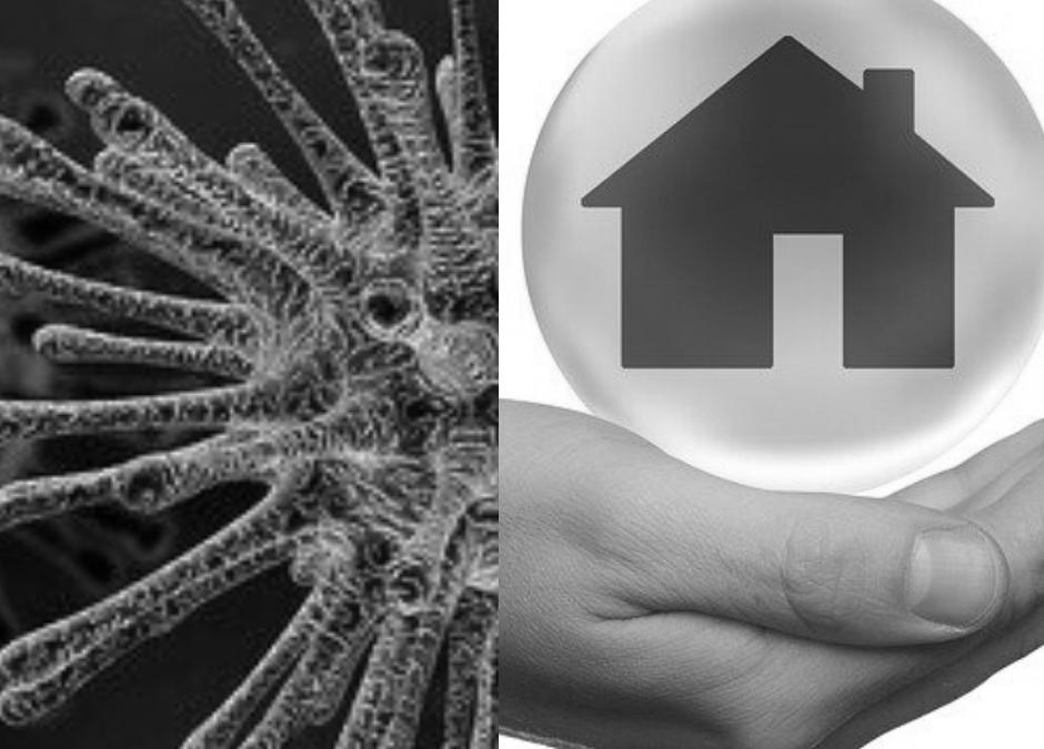 visuel coronavirus et immobilier
